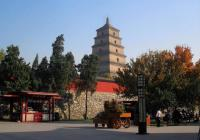 Xian Big Goose Pagoda Autumn Scenery