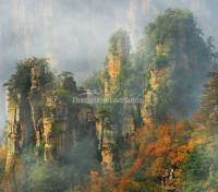 Charming  Zhangjiajie in Four Seasons