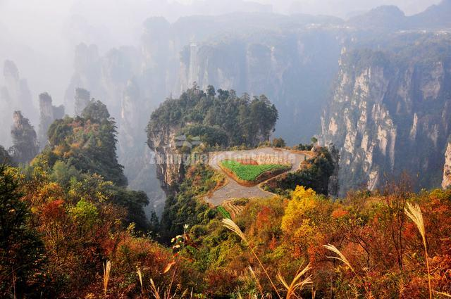 Donkey Friend Must-see Attractions in Zhangjiajie