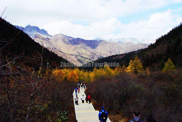 Huanglong Scenery Autumn