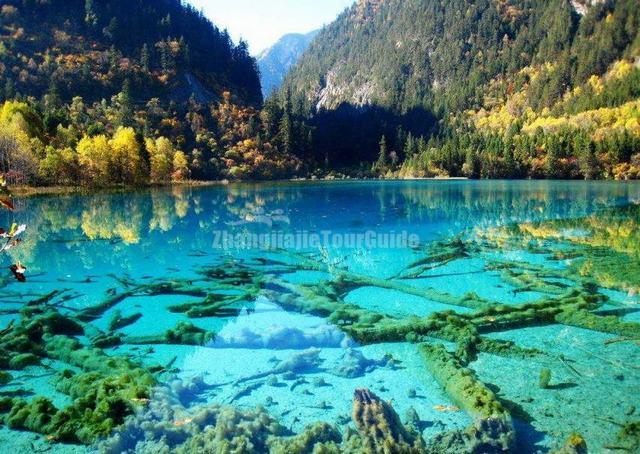 Jiuzhaigou Charming Autumn