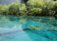Jiuzhaigou Charming Five Flower Lake