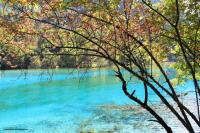 Jiuzhaigou Charming Lake
