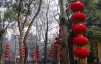 Lingyin Temple Activity Hangzhou