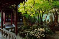 Master of Net's Garden Beautiful Landscape China
