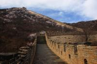 Mutianyu Great Wall Beautiful Scenery
