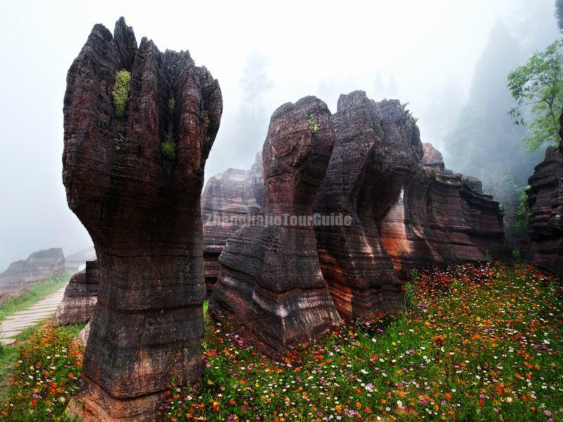Red Stone Forest Park Hunan