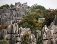 Spectacular Stone Forest Kunming