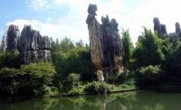 Stone Forest View Kunming