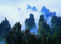 Scenery at Zhangjiajie Suoxi Valley Nature Reserve