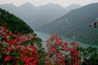 Three Gorges Charming Scenery China