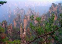 The Sandstone Peaks  at Wulingyuan Scenic and Historic Interest Area