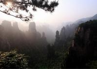 Morning in China Zhangjiajie National Park
