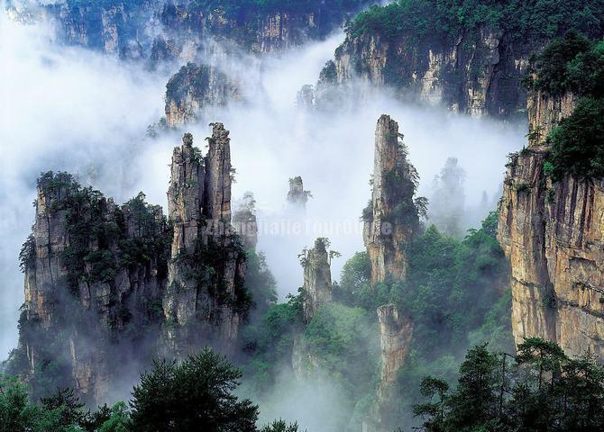Image result for Zhangjiajie National Forest