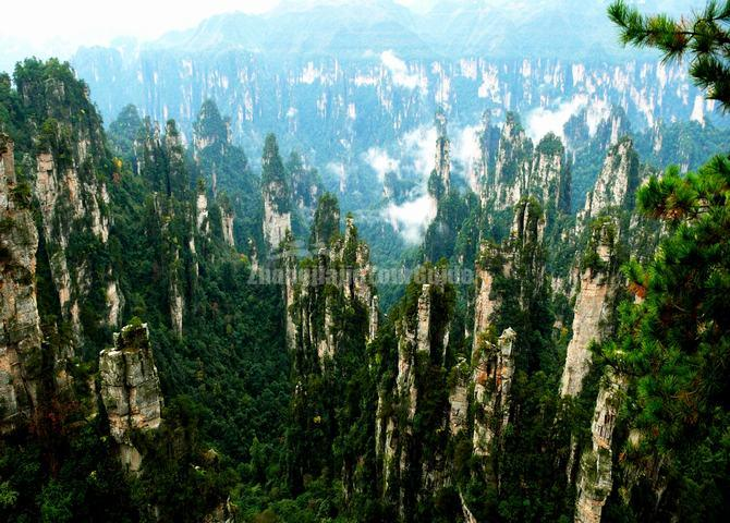 Zhangjiajie National Forest Park Scenery