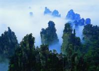 Zhangjiajie National Forest Park in Fog