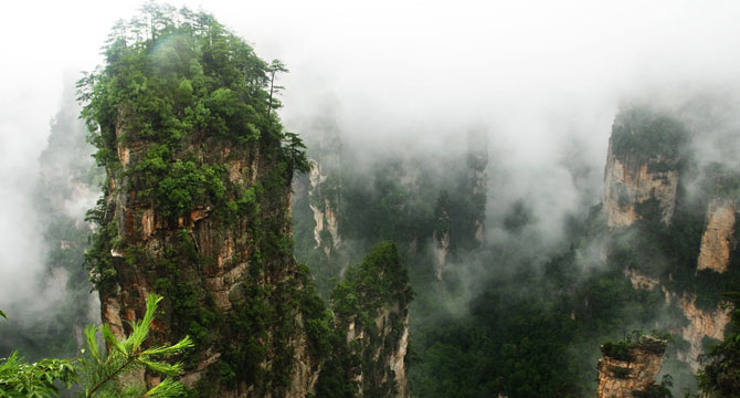 1-day Zhangjiajie National Park Tour